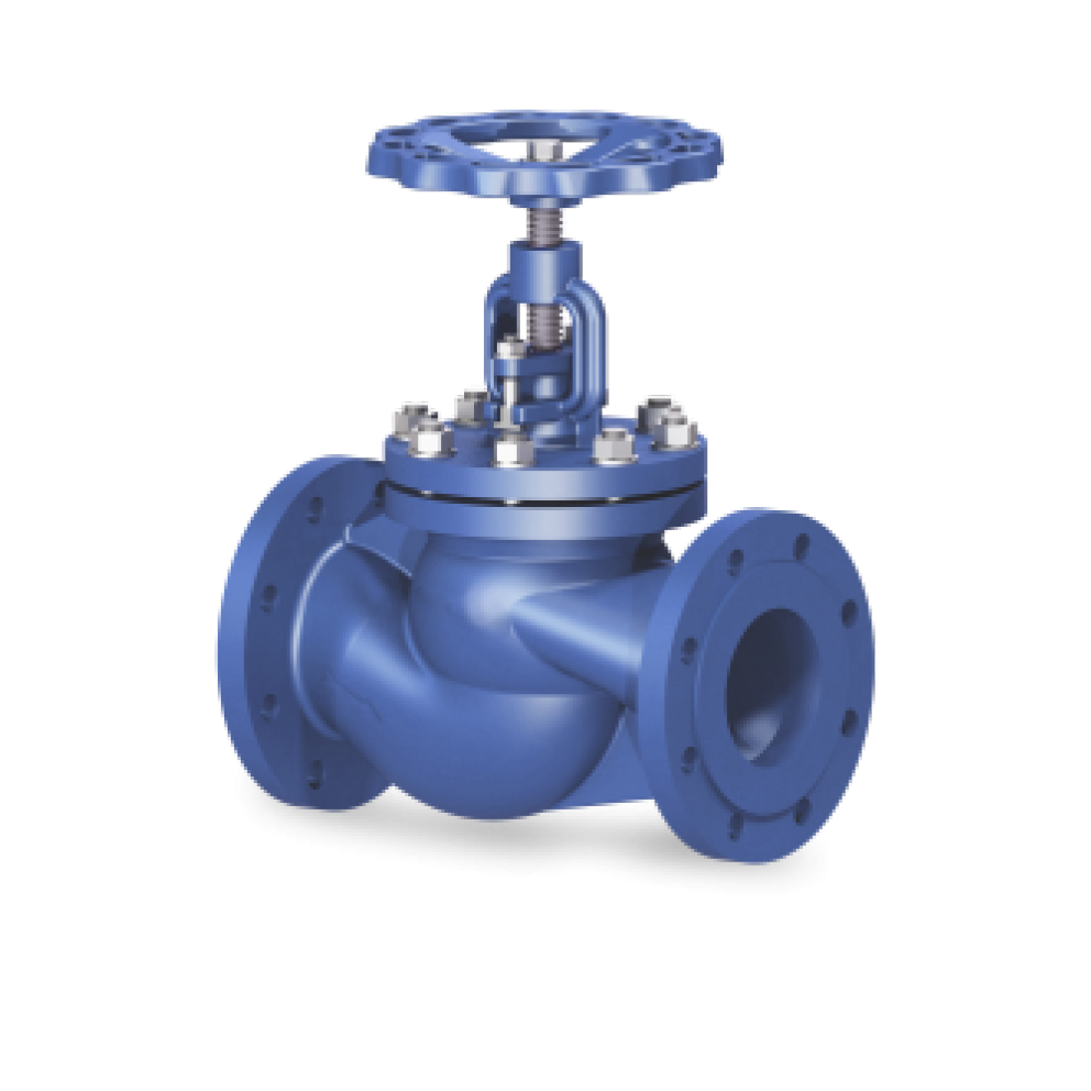 Globe valves, Globe valves for steam